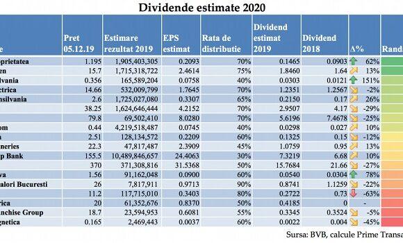 Investitiile in companii care dau dividende